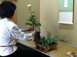 花所望は正客からお花を生ける