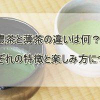 濃茶と薄茶の違い