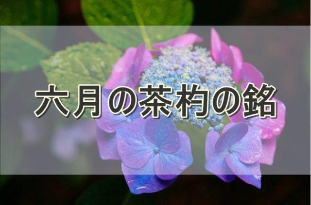 6月の茶杓の銘